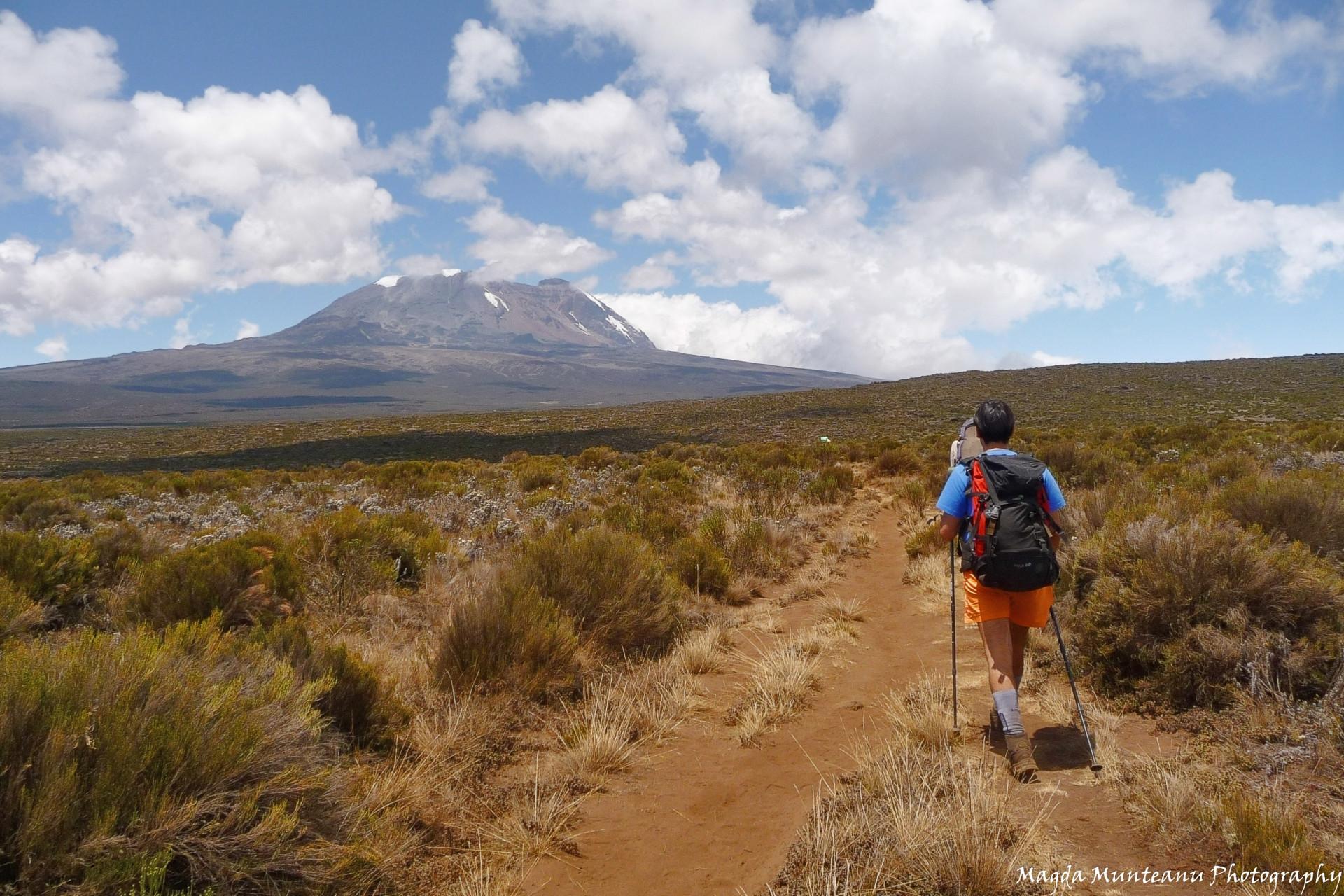 Kilimanjaro (5,895m), Tanzania